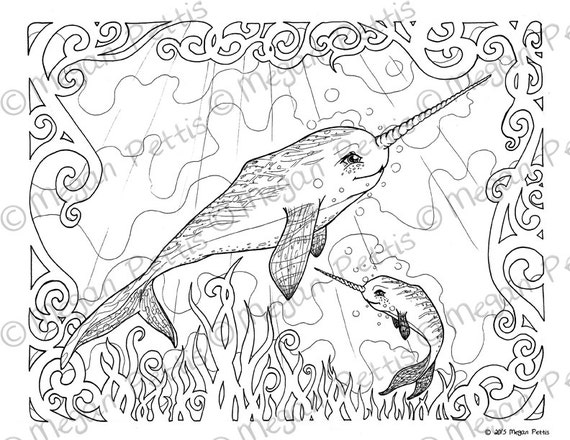 Narwhal Family Adult Coloring Book Page Whale Unicorn