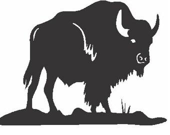 Buffalo Applique