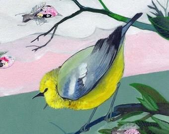 """Blue-Winged Warbler - bird art print, 6"""" x 6""""."""