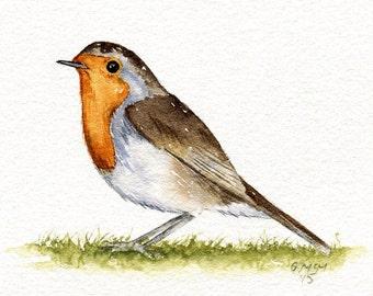 Watercolour sketch - Robin
