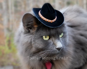 Cowboy Cat Hat - The Brick Cowboy Cat or Small Dog Hat with Studded Suede band