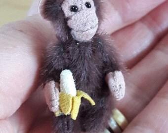 ZIM a miniature monkey
