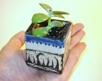 Box Planter – succulent planter – blue ceramic box – indoor garden – desk planter – utensil holder – plant cuttings - herb planter