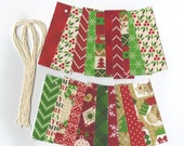 Skinny Tags // CandyLand Christmas Collection Gift Hang Tags (20) Package Decor