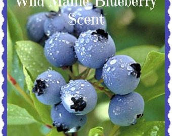 WILD MAINE BLuEBERRY Scented Soy Melts Tarts * Berry * Berries * Black Currant * Loganberry * Citrus Zest * Highly Scented * Handmade In USA