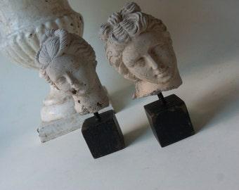 two mini heads
