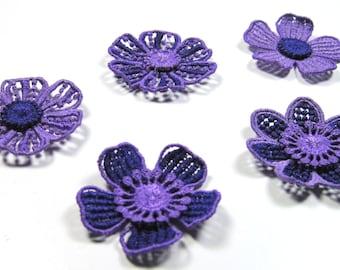 Flowers, Purple Lace