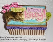 Tiger Tabby Cat Kitten Box / Trinket Jewelry Box / Handmade Decorative Box / Earring Necklace Box / Gift Box / Here Kitty Kitty / 3 Day Ship