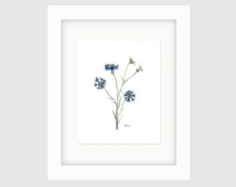 Instant Download Printable Art, Vintage French Botanical Print, French Flower Print, Wall Art Print,Wall Décor - Bluet