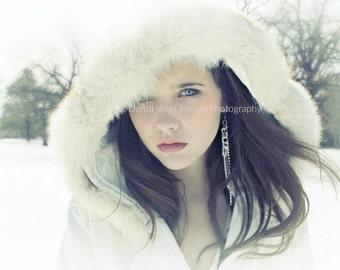 WINTER WONDERLAND photograph   model beauty ice queen apartment salon art decor