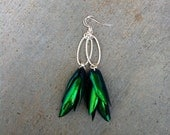 Jewel Beetle Wing Earrings, Insect Jewelry, Silver, Unique, real insect wings, Metallic Green, Festival, Item #BW001