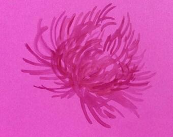 minimalist ink print: Salt Thistle