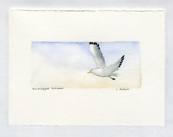 Original Seagull Painting Fine Art Card For Sale, beach artwork