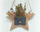 Hanging Americana Star