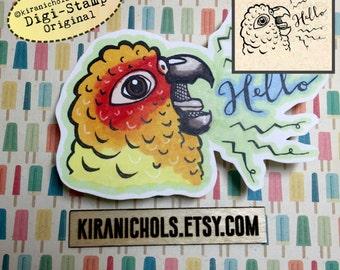Conure Digital Stamp - Digistamp - Loud Parrot Digital Stamp - Coloring Pages - Printable Sticker - Clip Art - Printables