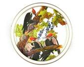 Audubon Storage Tin