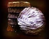 Chocolate Lavender Bergamot Shortbread - Exotically spicy chocolate - *think* chocolate earl grey with lavender