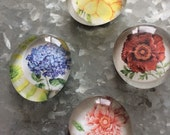 Four Flower set of four Glass Magnets