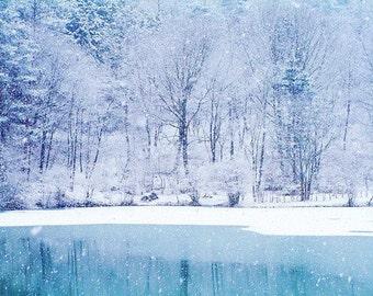 Winter Frost Candle Fragrance Oil - 2 oz.+ Bottle