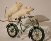 Mice On The Go Anthropomorphic taxidermy mouse