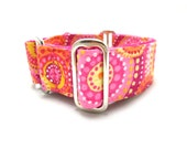 """Houndstown 1.5"""" Bright Circles Martingale or Buckle Collar Size Small through X-Large"""