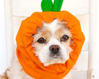 Pumpkin Dog Snood, Halloween, Fall, Autumn, Stay-Put 3 Rows Elastic Thread, Pet Hat, Dog Costume