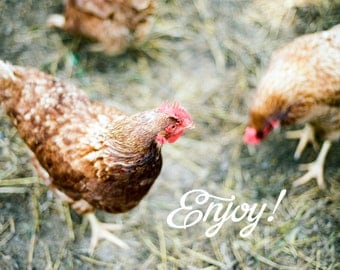 """Notecard 4x6"""" Blank Inside + Envelope - 35mm Film Photo - Enjoy - Chickens - Homestead - Farming - Poultry - Just Because - For Friends"""