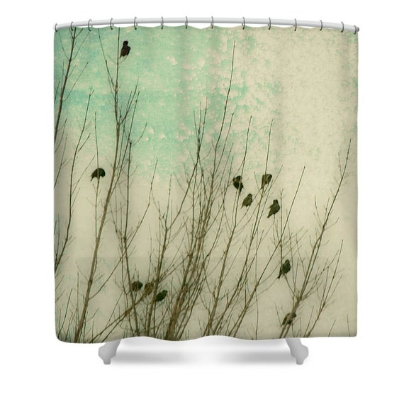 Bathroom Art Minted: Mint Bathroom Decor Birds Shower Curtain By SylviaCPhotography