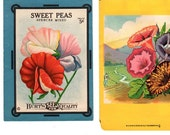 Antique Seed Packets . William D. Burt Dalton NY . Flower Seeds Sweet Peas Spence Mix . Petonia Flowers . Think Spring