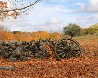 Connecticut - Autumn Home Decor Fine Art Photograph / Rustic Fall Wall Hanging