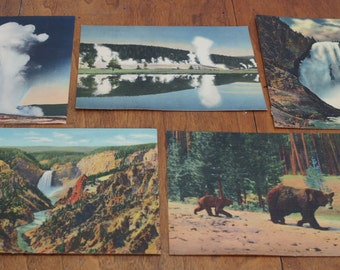 Vintage Giant Yellowstone Postcards Lot of 5, large size, framable