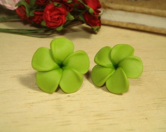 Sweet Green Plumerias Frangipani Stud/Post Earrings