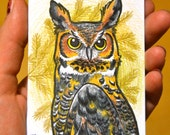 Great Horned Owl Illustration ORIGINAL ACEO TW Feb Colored Pencils Kate Holloman