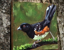 Bird painting small towhee bird daily painting oil painting eastern towhee male