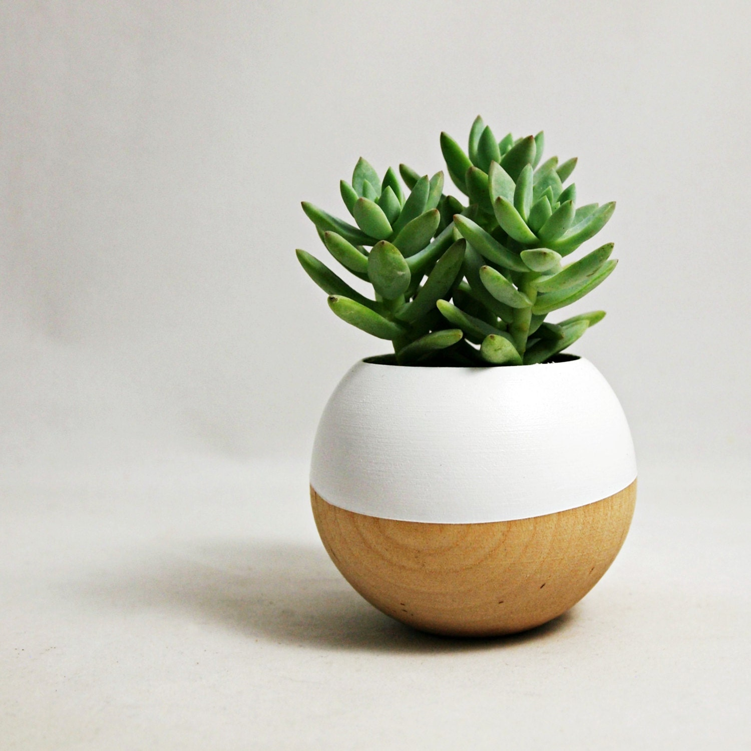 Sphere Succulent Air Plant Planter White Wood By