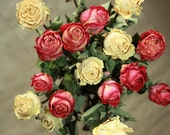 20 Natural Dry Roses - Natural Color - Roses for Weddings-Luck-Love-Romance and all other Matters of the Heart - Dried Flowers