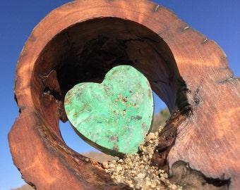 Cholla Wood  - Heart of Stone -  Turquoise  - AZ DAN ORIGINAL - Home of the Wild Spanish Mustangs