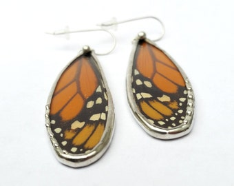 Monarch Butterfly / Real Butterfly / Butterfly Wing Earrings / Butterfly Jewelry