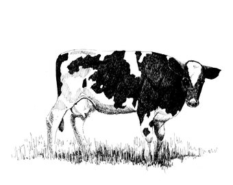 Black and white cow art,downloadable Print,Pen and Ink Drawing,Study of a Cow,Country print.Country art, farm animal art,bovine art,cow art