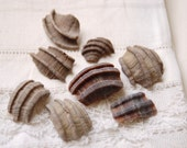 8 larger pieces of fossilized ecphora shell (no.1a)