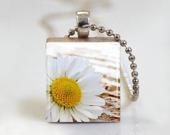 White Daisy Countryside - Scrabble Tile Pendant - Free Ball Chain Necklace or Key Ring