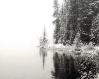 Lake Louise Photography Print 11x14 Fine Art Banff Canada Woodland Black and White Pine Trees Snow Winter Landscape Photography Print.