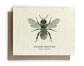 Orchard Mason Bee Card - 100% of Profits to Save the Bees - Plantable Seed Paper