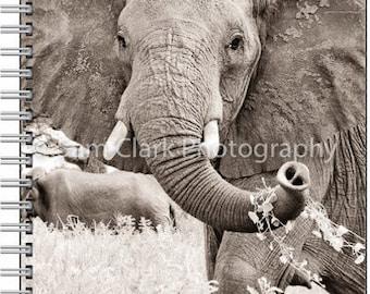 ELEPHANT NOTEBOOK -Elephant journal, Elephant photo, notebook, wildlife notebook, animal notebook, inspirational