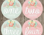 SALE Baby Girl Month Stickers Monthly Baby Stickers, Milestone Baby Month Stickers, Monthly Bodysuit Vintage Floral Shabby Chic Blush Pink M