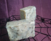 Negative Nancy Soap (oatmeal lavender)
