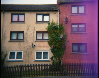 Inverkeithing Ivy - Giclée Print from Holga Photograph, Color Film