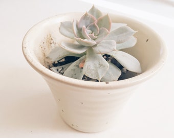 Creamy Vase Decorative Succulent Planter, Cute Ceramic Pot, Indoor Planter