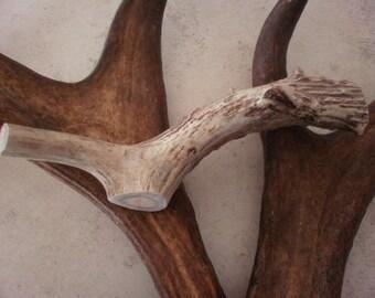 1 natural deer antler piece crafts decor design real organic pet antlers horns sheds treat handle display unique