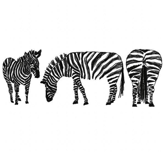 Zebras machine embroidery design instant download from